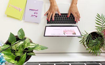 Divi, il tema per WordPress per chi fa marketing online